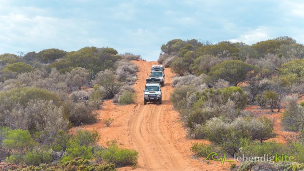 Offroad Track Australien Red Sand Dessert Outback